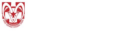 Logo Site Fédération Suisse de Dodgeball
